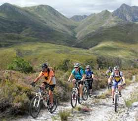 group of mountain bikers cycling uphill